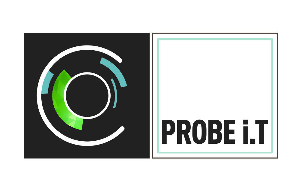 Probe IT cybersécurité